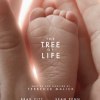 Thumbnail image for The Tree of Life – God is in the details